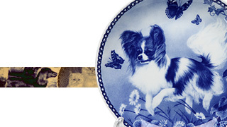 Dog & Cat Plate San-Lekven Design