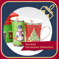 Aynelsey Christmas