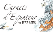 """Carnets d'Equateur"" in HERMES, is at our stores now."